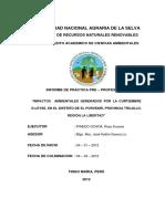 """Impactos Ambientales Generados Por La Curtiembre D-leyse, En El Distrito de El Porvenir, Provincia Trujillo, Región La Libertad"""""""