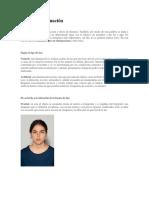 Tipos de iluminación vertical.pdf