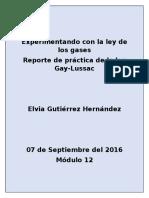 GutierrezHernandez Elvia M12S4 Pi Experimentandoconlaleydelosgases