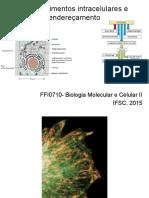 aula 4 Enderecamento de proteinas.pdf