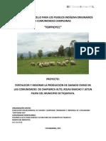 Proyecto Chapisirca Alto, Rojas Rancho y Jatun Pujru