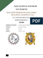 Informe de Gases- Segunda Presentacion-Fisicoquimica I