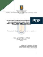 Tesis Sintesis y Caracterizacion de Membranas.image.marked