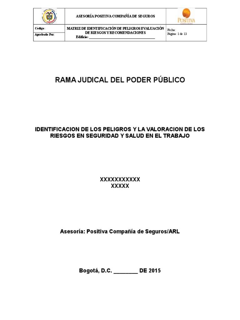 Plantilla Informe Matriz de Peligros