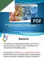 03-BACTERIAS CALSIFICACION Y CARACTERISTICAS 19-4-13.pdf