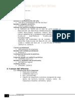 Formato de Informe de Practicas Pre Profesionales  segundo modulo