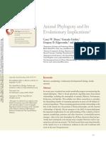 filogenia animal.pdf