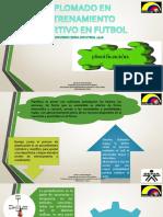 Planificacion Diplomado PDF