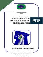 12 Manual IPER (1)