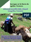 La Cría de Borregos en La Sierra de Zongolica