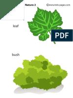 Nature2_medium (1).pdf