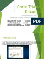 Corte Triaxial Dinámico