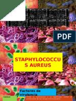 MICROBIOLOGIA PRODUCTO DIAPOS