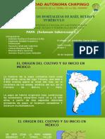 E-01- PAPA -  20151002.pptx