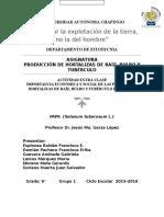 PAPA (Solanum Tuberosum L.)