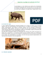 Animales en Peligro de Extincion Peru