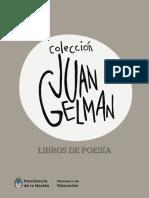 Coleccion Juan Gelman