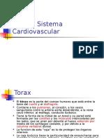 Torax y Cardio