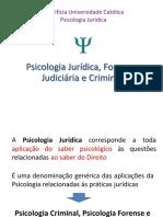 3.1 Aula Psicologia Jurídica Forense Judiciária e Criminal