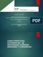 Patologia de Utero y Malformaciones