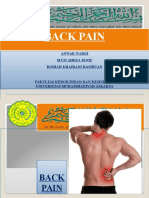 back pain.ppt