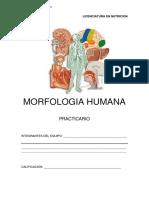 PRACTICARIO-NUTRICION.pdf