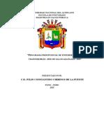 ENSAYO DE PROGRAMAS PRESUPUESTALES.docx