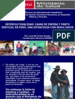 Plan de parto pdf