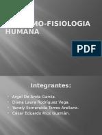 Anatomo Fisiologia Humana