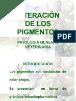 alteracion-pigmentos.ppt