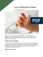 The Development of Fingerprints in Babies