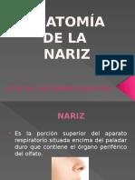 Naricita EXPO