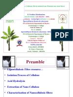 R. Pavithra Marthandam Plantain Fibres NCPCCM 2016