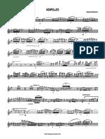 Finale 2005 - [011 Inst D¢ Cv Sol Solist].pdf