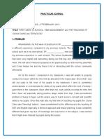 SAMPLE of Practicum Journal