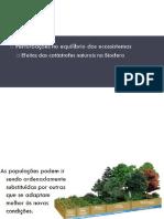 Desequilibrios Dos Ecossistemas Pps1 8ano