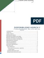 Disponibilidad hidrica e hidrograma de caudales.docx