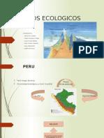 PISOS-ECOLOGICOS.pptx