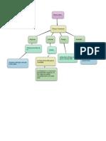 mappa concettuale conseguenze della riforma luterana