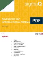 Introd a Sistemas SAP