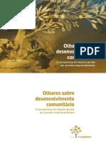 Olhares Sobre o Desenvolvimento Comunitario 10 Perspectivas Do Impacto Gerado