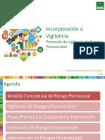Presentacion Programa Vigilancia ACHS