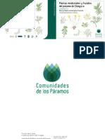 Plantas Medicinales y Frutales de pÁRamo de Chingaza