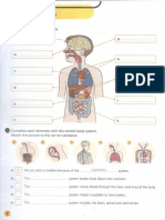 Unit1 Body Systems Activity Book 3 PRIMARIA