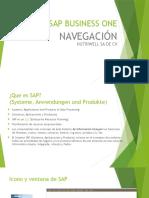 1 - SAPB1 - NAVEGACION