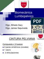 Biomecanica_Lumbopelvico