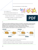 ficha-de-trabalho-4-sistema-imunitario (1).doc