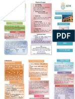 Guia constribuyente 2016.pdf