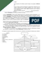 ciclo_de_rocas.pdf