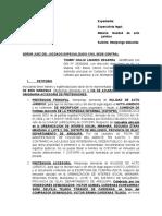 Modelo de demanda por nulidad de acto juridico